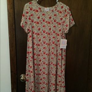 Gorgeous floral Carly BNWT size small